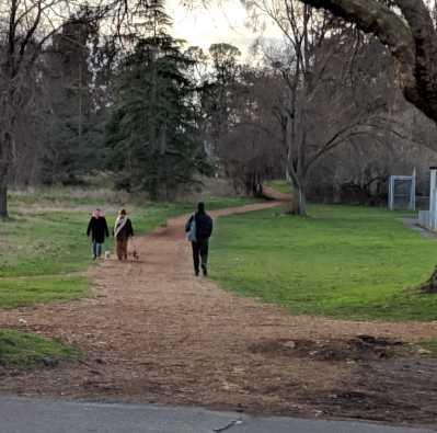 Walking in Beacon Hill Park